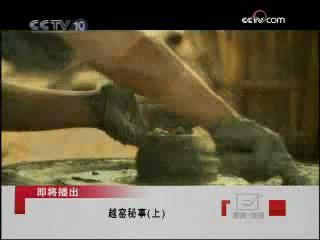 世界上最早的青瓷窑址--越窑